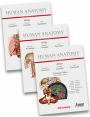 Human Anatomy Atlas Multimedial Interactive Atlas – Volumes 1-3