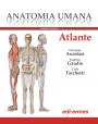 Anatomia Umana – Atlante – Edizione digitale