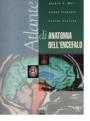 Atlante di anatomia dell'encefalo