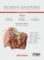 Human Anatomy - Multimedial Interactive Atlas - Vol. 1
