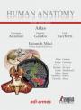 Human Anatomy - Multimedial Interactive Atlas - Vol. 3