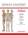 Human Anatomy - Atlas - Digital edition