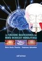 La funzione masticatoria nei morsi incrociati monolaterali